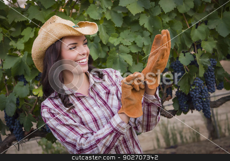 Young Adult Female Wearing Cowboy Hat and Gloves in Vineyard stock photo, Young Mixed Race Adult Female Farmer Wearing Cowboy Hat and Putting on Gloves in Grape Vineyard. by Andy Dean