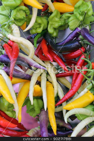 Colorful chili and bell peppers stock photo, Background of colorful chili and bell peppers. by Martin Crowdy