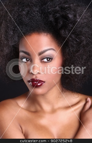 Beautiful African American Black Woman stock photo, Stunning Portrait of an African American Black Woman by Katrina Brown