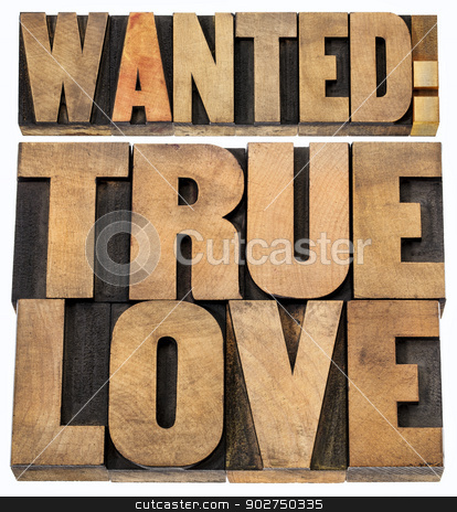 wanted true love in wood type stock photo, wanted true love - romance concept -isolated text in letterpress wood type blocks by Marek Uliasz