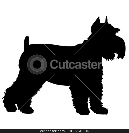 Schnauzer Silhouette stock vector clipart, A black silhouette of a Schnauzer standing by Maria Bell