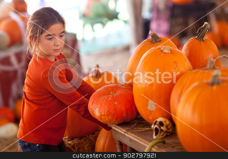 Cute Girl Choosing A Pumpkin stock photo, Cute Girl Choosing A Pumpkin at A Pumpkin Patch One Fall Day. by Andy Dean