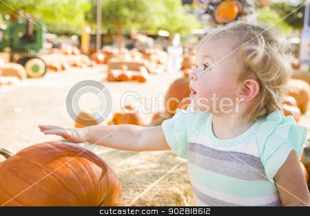 Adorable Baby Girl Having Fun at the Pumpkin Patch stock photo, Adorable Baby Girl Having Fun in a Rustic Ranch Setting at the Pumpkin Patch.  by Andy Dean