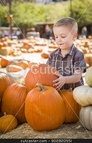Little Boy Gathering His Pumpkins at a Pumpkin Patch stock photo, Adorable Little Boy Gathering His Pumpkins at a Pumpkin Patch on a Fall Day.  by Andy Dean