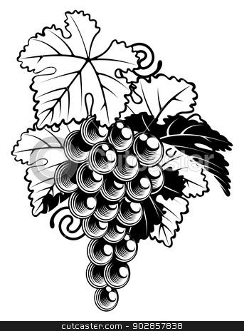 Grapes on Grapevine stock vector clipart, An illustration of a bunch of grapes on a grapevine in a  vintage woodcut print style by Christos Georghiou