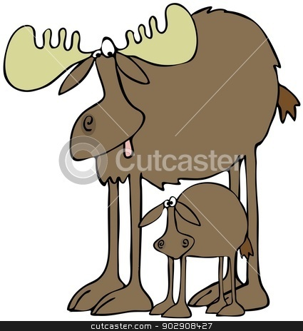 Moose and calf stock photo, This illustration depicts a large bull moose with its calf standing beneath it. by Dennis Cox