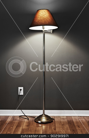 Floor lamp stock photo, Tall floor lamp with metal base and dark lampshade on hardwood flooring in room by Elena Elisseeva