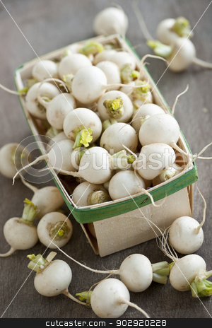 Basket of small turnips stock photo, Many small white freshly picked turnips in basket for sale on farmers market by Elena Elisseeva