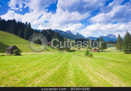 Val di fiemme plateau stock photo, Beautiful alpine plateau in Val di Fiemme of Trentino by Natalia Macheda