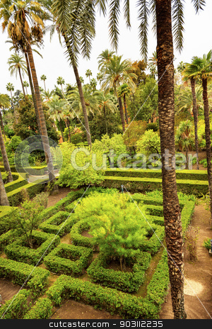 Palms Garden Alcazar Royal Palace Seville Spain stock photo, Palms Hedges Garden Alcazar Royal Palace Seville Andalusia Spain.  Originally a Moorish Fort, oldest Royal Palace still in use in Europe. Built in the 1100s and rebuilt in the 1300s.  by William Perry