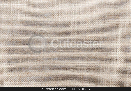 Canvas fabric texture stock photo, Rustic canvas fabric texture in natural color by Elena Elisseeva