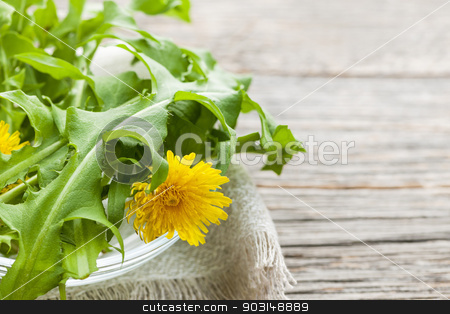 Dandelions greens and flowers stock photo, Foraged edible dandelion flowers and greens in bowl on rustic wood background with copy space by Elena Elisseeva