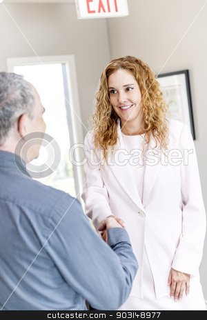 Man and woman shaking hands in office stock photo, Man and woman meeting in office shaking hands completing business deal by Elena Elisseeva