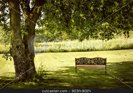 Park bench under tree stock photo, Bench under lush shady tree in summer park by Elena Elisseeva