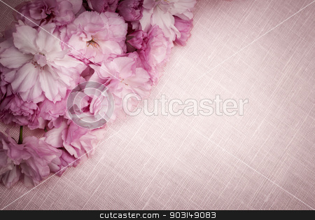 Cherry blossoms on pink linen stock photo, Pink linen fabric background with cherry blossoms by Elena Elisseeva