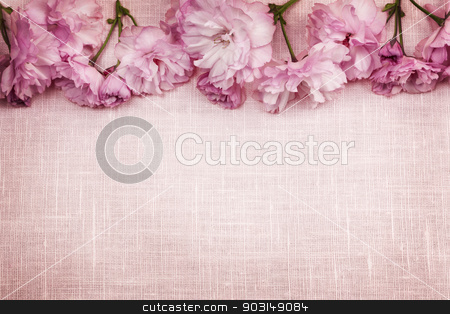 Cherry blossoms border on pink linen stock photo, Border of pink cherry blossoms row with linen background by Elena Elisseeva