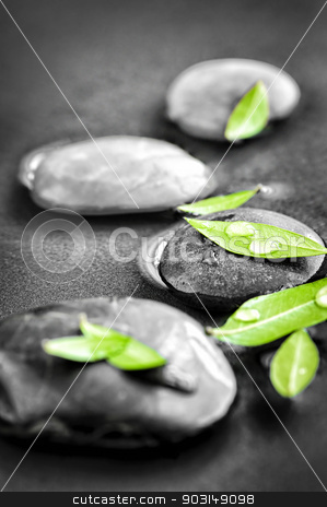 Stones with green leaves and water drops stock photo, Black and white zen stones submerged in water with color accented green leaves by Elena Elisseeva