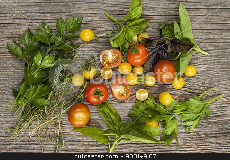Tomatoes and herbs stock photo, Fresh colorful tomatoes and herbs on rustic wooden background from above by Elena Elisseeva