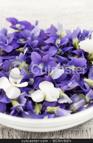 Edible violets in bowl stock photo, Foraged edible purple and white violet flowers in bowl closeup by Elena Elisseeva