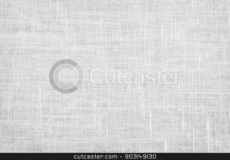 Linen fabric background stock photo, White linen woven fabric background or texture by Elena Elisseeva