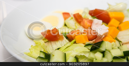 Salad with Cheese Tomato and Boiled Egg stock photo, A fresh salad of lettuce, cucumber, cheddar cheese, tomato and chicken on a white plate by Darryl Brooks