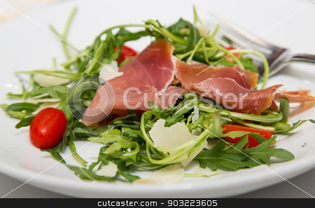 Salad of Arugula and Prosciutto stock photo, A fresh salad of arugula greens, cherry tomatoes and prosciutto by Darryl Brooks