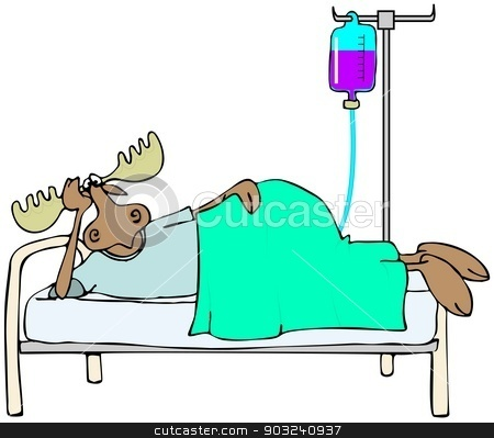 Sick moose in bed stock photo, This illustration depicts a moose laying in bed with an IV stand and tubing. by Dennis Cox