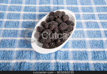 Blackberries in White Dish stock photo, Fresh blackberries in a white dish on a blue towel by Darryl Brooks
