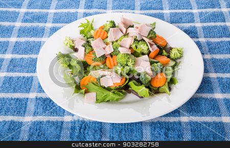 Sliced Turkey on a Fresh Vegetable Salad stock photo, A fresh salad of greens, cucumber, and carrots in a white plate by Darryl Brooks