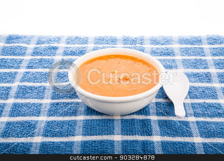 Bowl of Tortilla Soup on Blue Towel stock photo, A bowl of hot, spicy tortilla soup on a blue plaid towel by Darryl Brooks