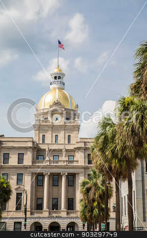 Savannah City Hall and Palm Trees stock photo, Classic old Savannah, Georgia City Hall with Gold Dome and American Flag by Darryl Brooks