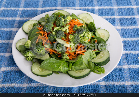 Spinach Salad with Cucumbers and Broccoli stock photo, Fresh green salad with spinach, broccoli, sliced cucumbers with shredded cheese and carrots by Darryl Brooks
