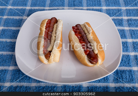 Two Hot Dogs at Angle stock photo, Two Hot Dogs at Angle on a white plate by Darryl Brooks