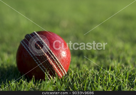 Red cricket ball on green grass stock photo, Close up of a side lit red cricket ball on the green grass of a sports field, with copyspace by Stephen Gibson