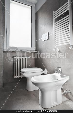 White toilette stock photo, White modern toilette and bidet on gray wall  by Dario Rota