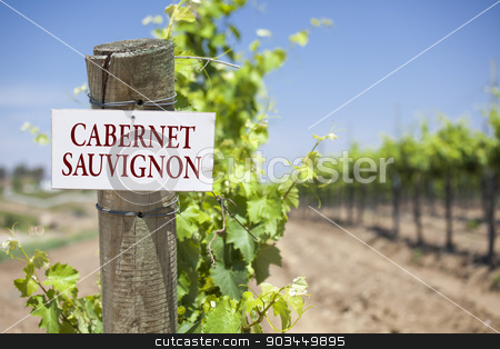 Cabernet Sauvignon Sign On Vineyard Post stock photo, Cabernet Sauvignon Sign On Post at the End of a Vineyard Row of Grapes. by Andy Dean