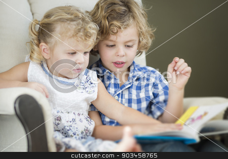 Young Brother and Sister Reading a Book Together stock photo, Cute Young Brother and Sister Reading a Book Together in a Chair. by Andy Dean
