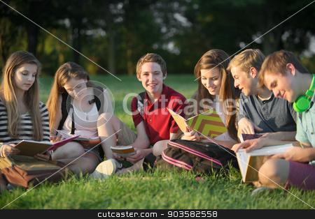 Teens Doing Homework Outdoors stock photo, Group of six Caucasian teen students doing homework by Scott Griessel