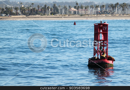 Buoy Sea Lions stock photo, Red buoy with sea lions in front of the Ventura coast. by Henrik Lehnerer