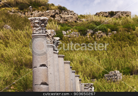 Corinthian Columns at Perga stock photo, Corninthian columns in a line at Perga by Scott Griessel
