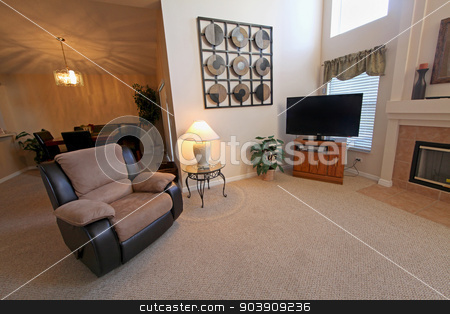 Living Area stock photo, A Living Area in a Home in Florida by Lucy Clark