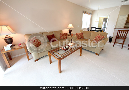 Living Room stock photo, A Living Area in a Home in Florida by Lucy Clark