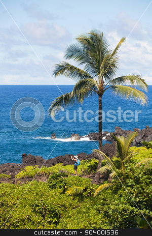 Tourist Near Hana stock photo, Tourist taking photo near Hana on Maui by Scott Griessel