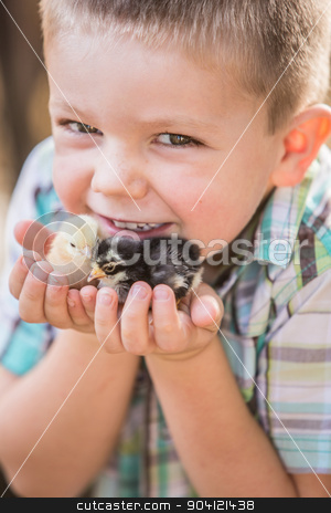 Child With Pet Chicks stock photo, European smiling boy holds his pet chicks by Scott Griessel