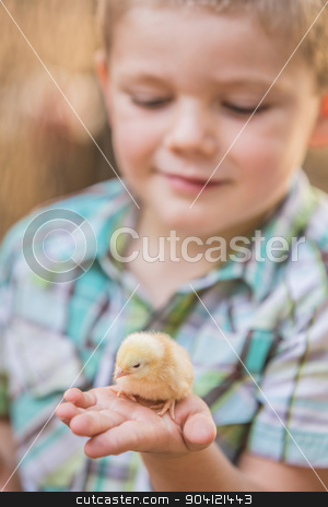 Curious Boy With Yellow Chick stock photo, Cute Caucasian boy holding his pet chick by Scott Griessel