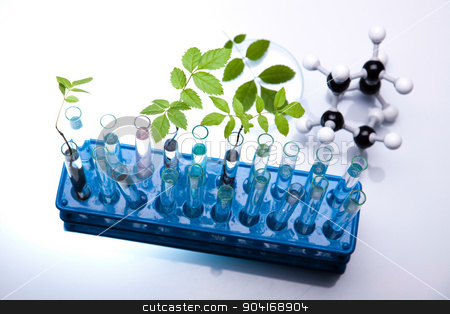 Laboratory glassware equipment, Experimental plant stock photo, Laboratory glassware equipment, Experimental plant by Sebastian Duda