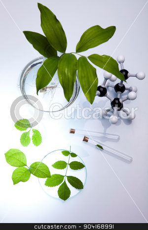 Plant in a test tube in hands of the scientist stock photo, Plant in a test tube in hands of the scientist by Sebastian Duda