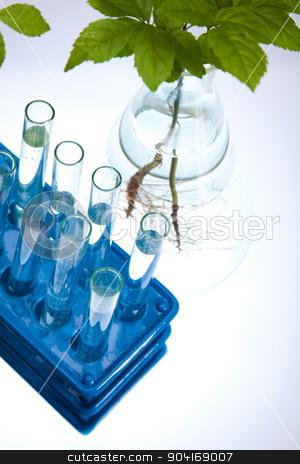 Laboratory pipette, bio organic modern concept stock photo, Laboratory pipette, bio organic modern concept by Sebastian Duda