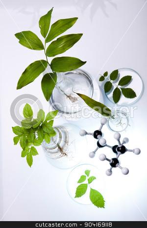 Chemical laboratory glassware, bio organic modern concept stock photo, Chemical laboratory glassware, bio organic modern concept by Sebastian Duda