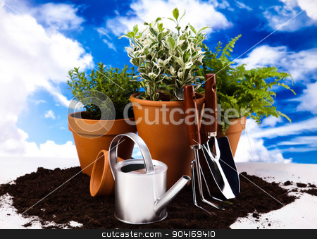 Garden background, vivid bright springtime concept stock photo, Garden background, vivid bright springtime concept by Sebastian Duda